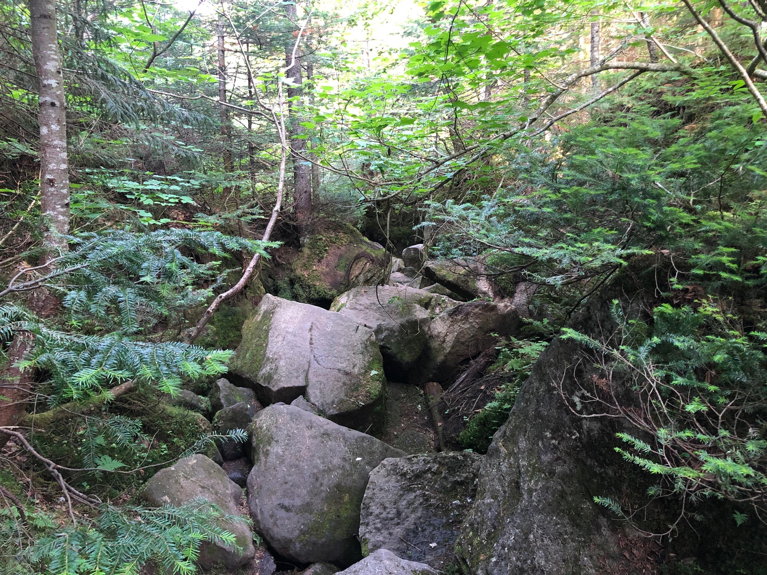 The Trail Through Mahoosuc Notch