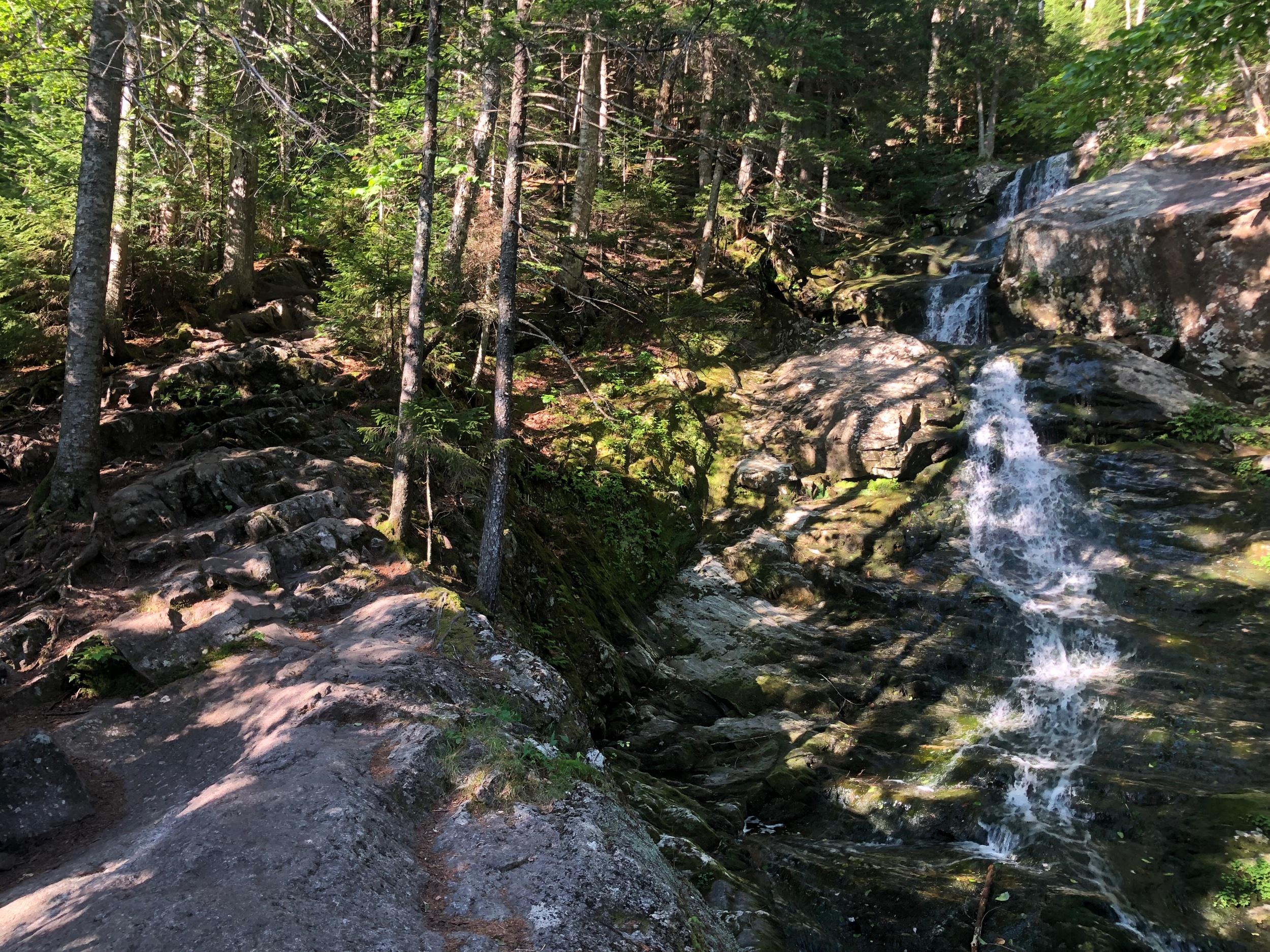 Climbing Moosilauke