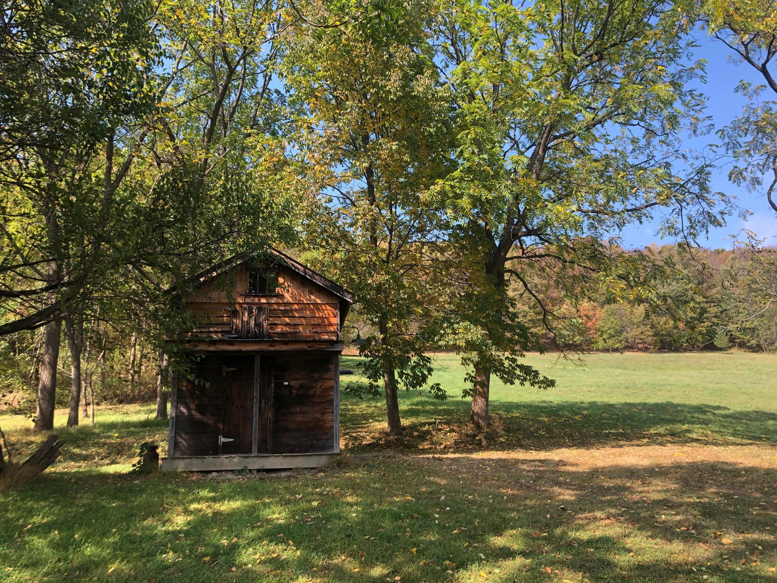 """The """"Secret Shelter"""" on Jim Murray's Farm (Shhhhh)"""