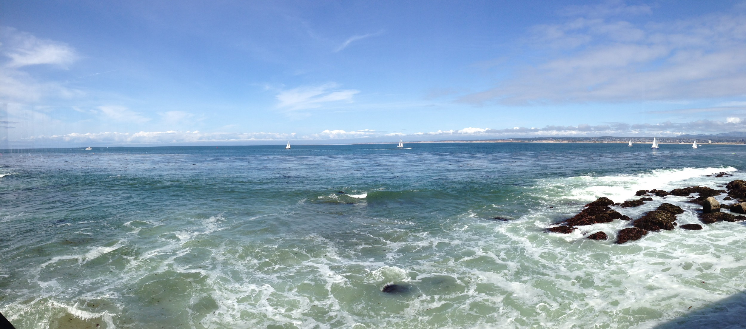 View from  The Fish Hopper  in Monterey Bay, California.