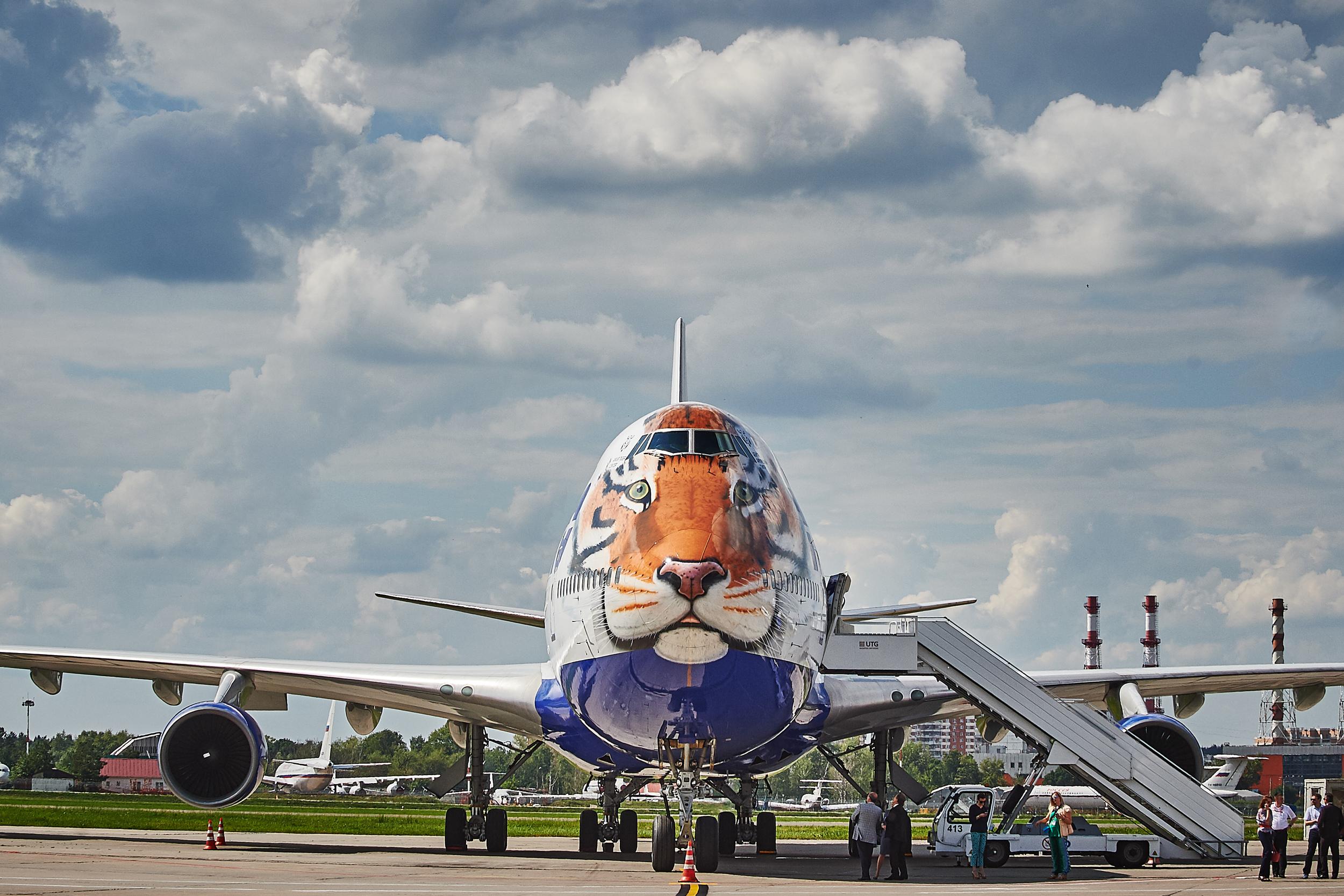 Transaero tiger jumbo aircraft