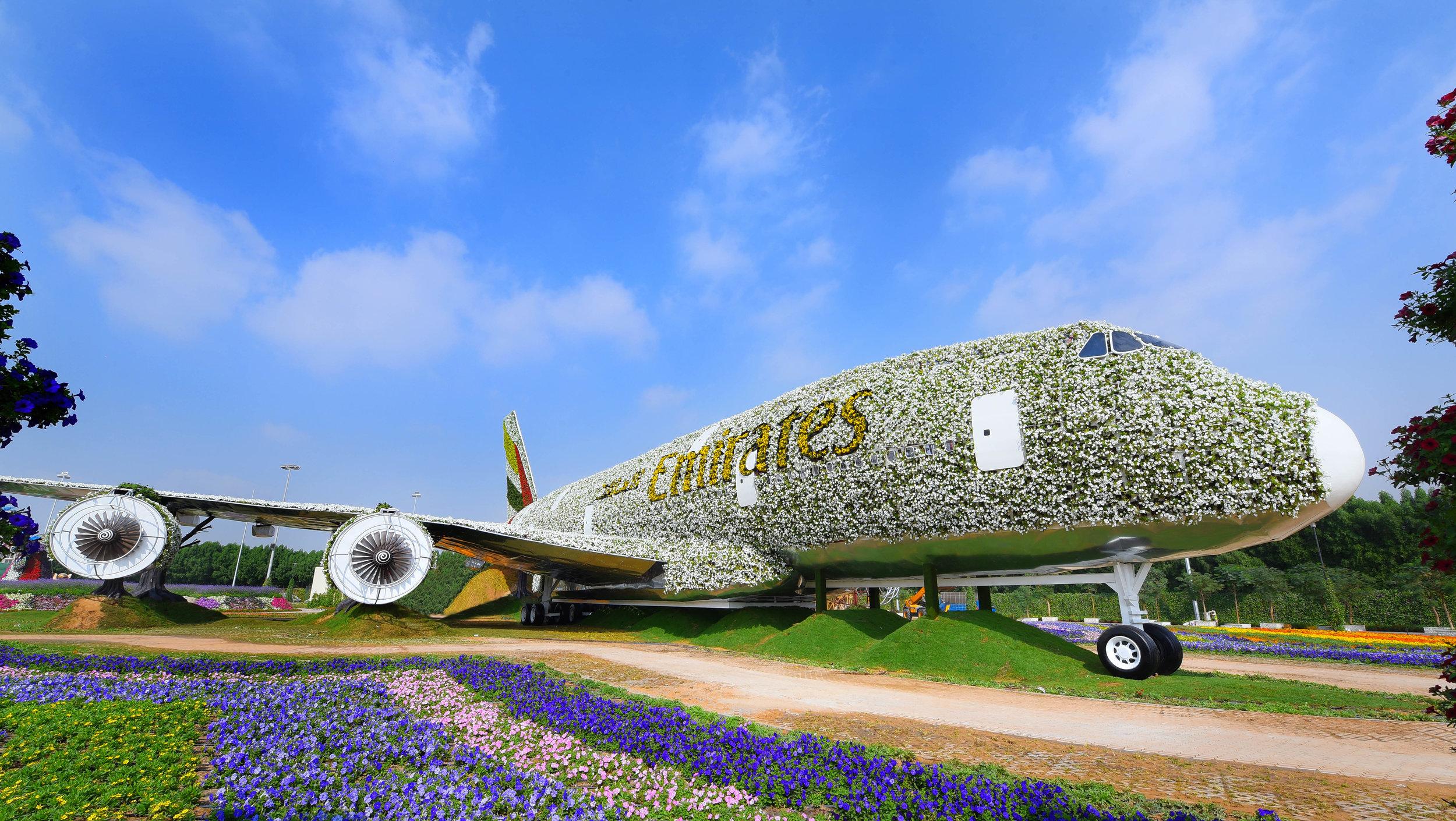 Picture:  Emirates