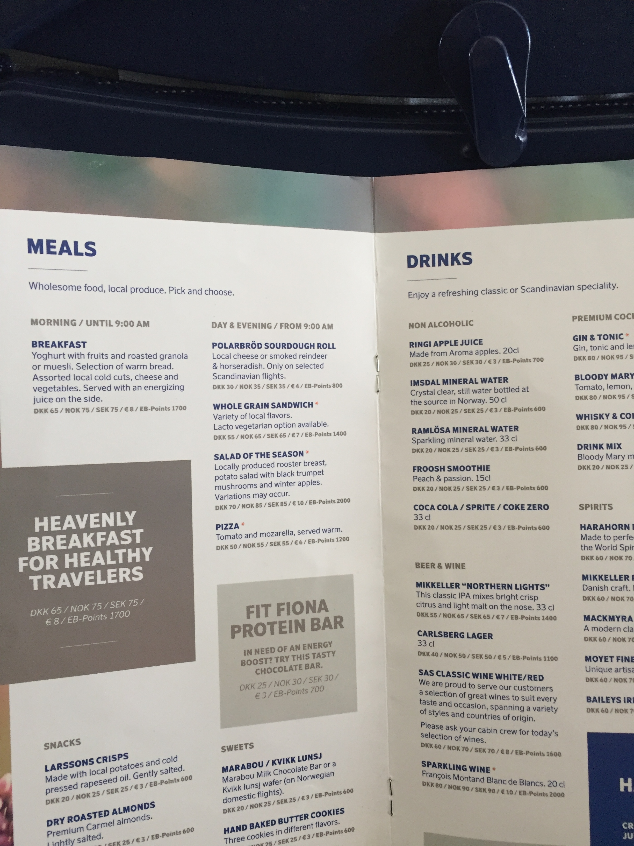 SAS inflight menu.JPG