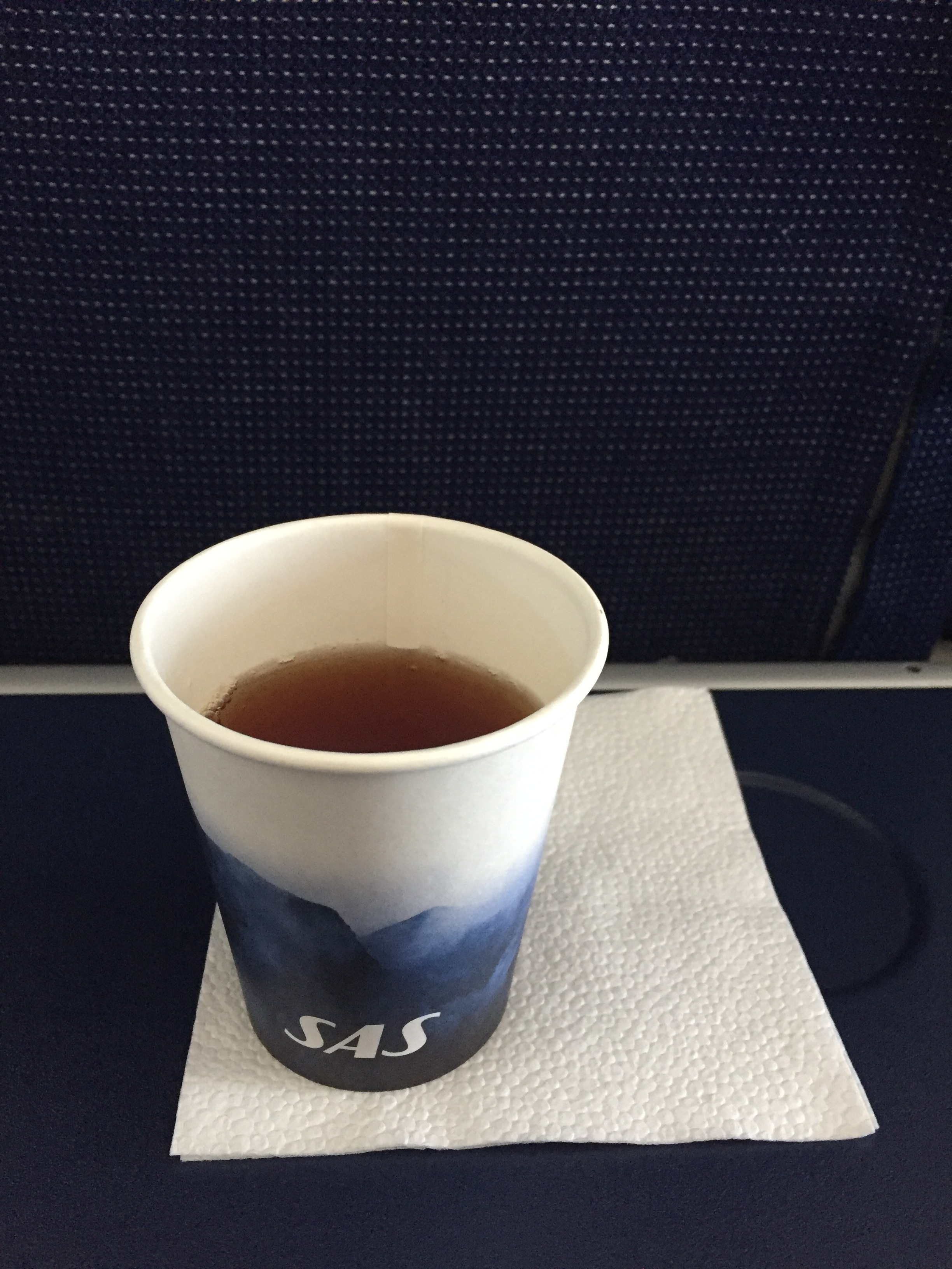 SAS inflight drinks.JPG