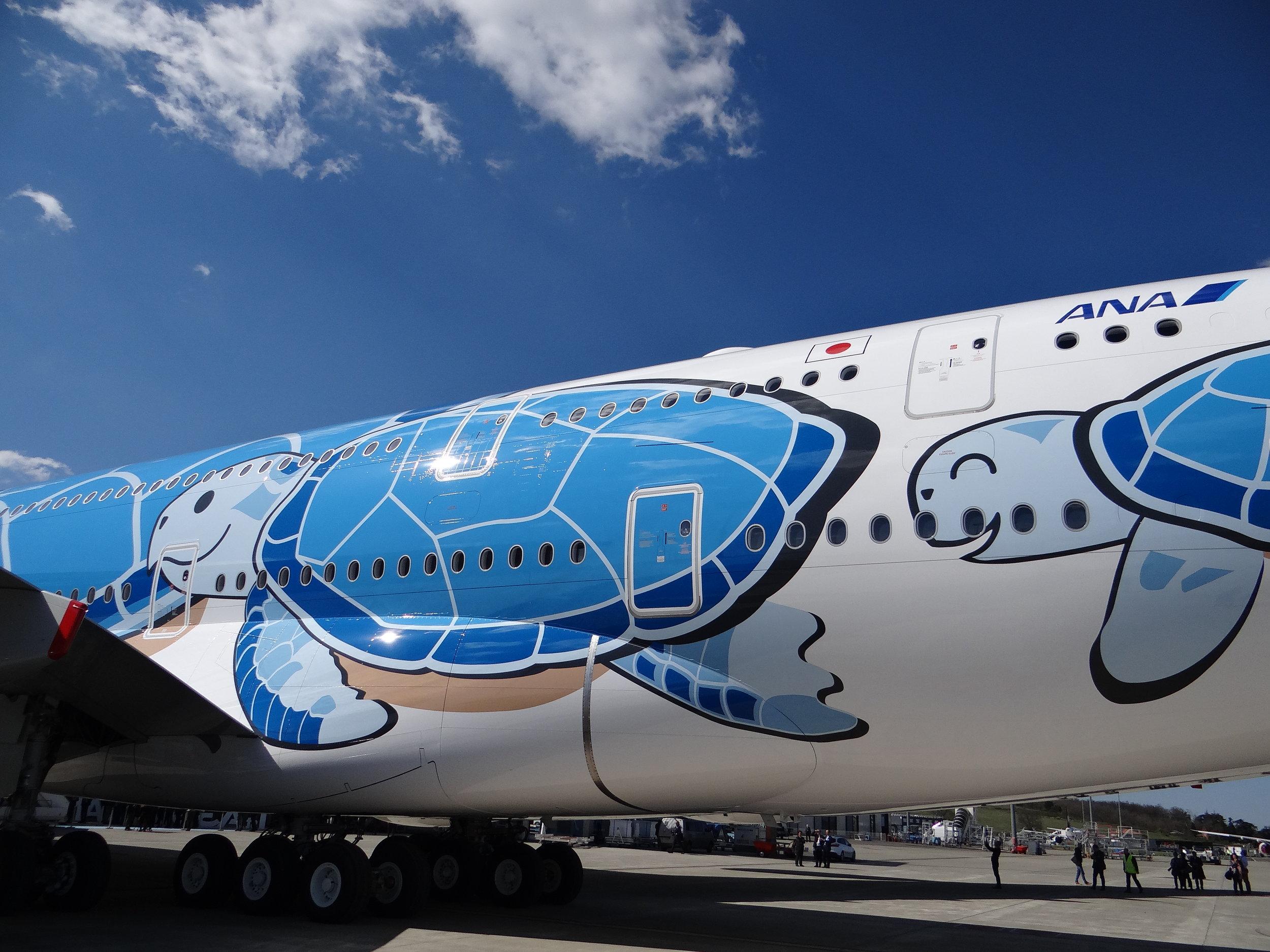 A380 turtle livery honu.JPG