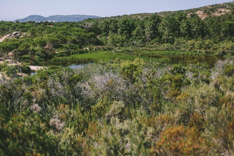 CorsicaRoadtrip0318.jpg