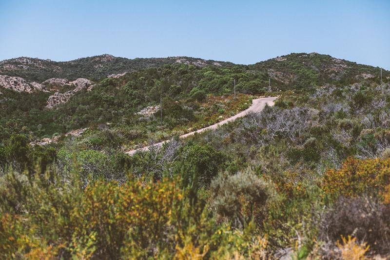 CorsicaRoadtrip0340.jpg