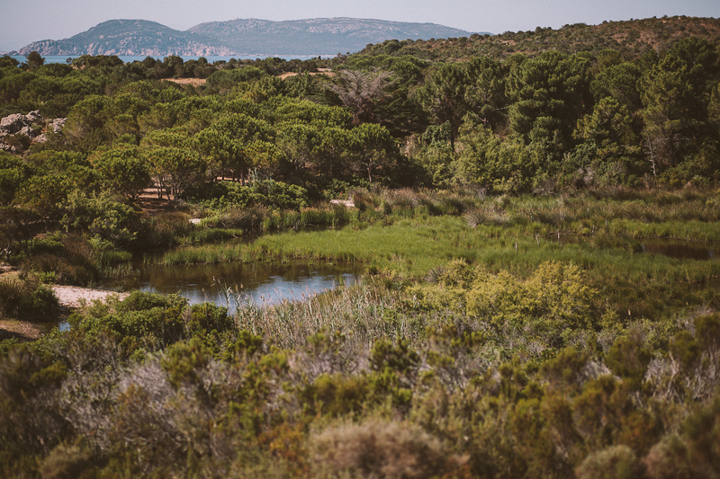 CorsicaRoadtrip0449.jpg