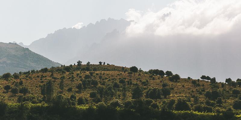 CorsicaRoadtrip0953.jpg