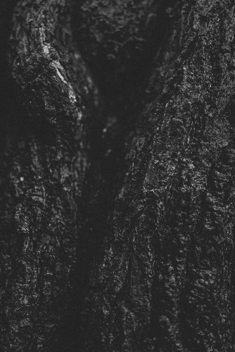 portrait-photography-IMG_7130-2.jpg