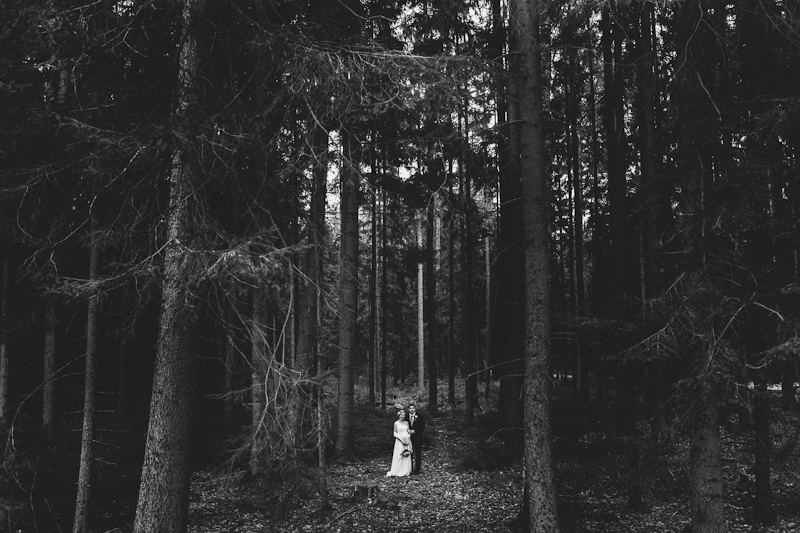 A wedding portrait in the woods  (Wedding)