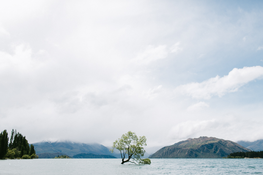 new-zealand-wanaka-wedding-photography-al123-IMG_1828.jpg