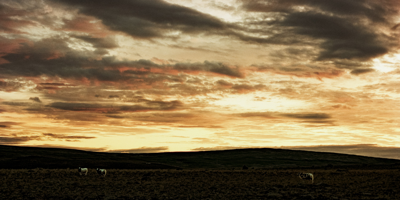 Iceland_2014-134.jpg