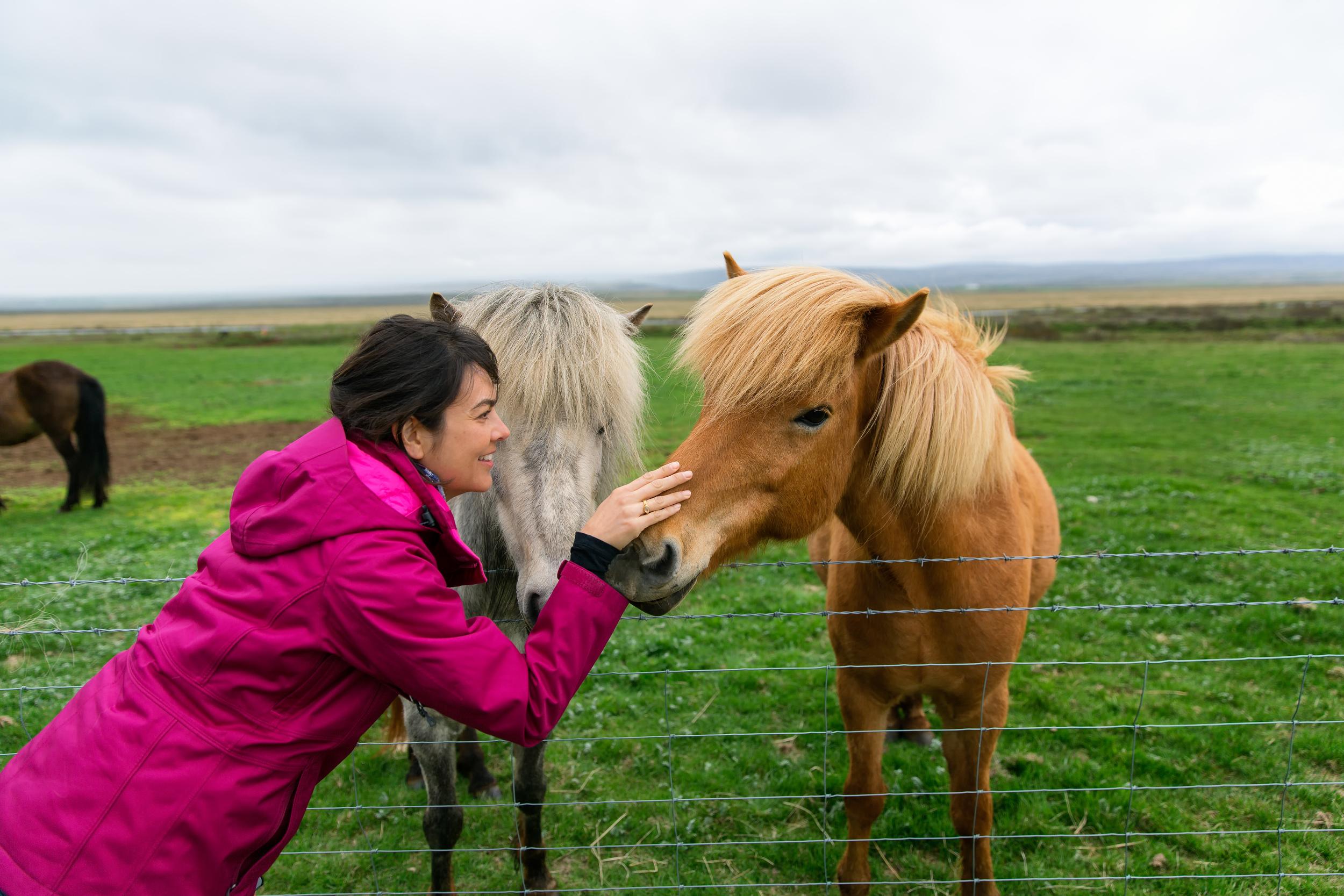 Dorothy pets an Icelandic Horse (Golden Circle Tour).