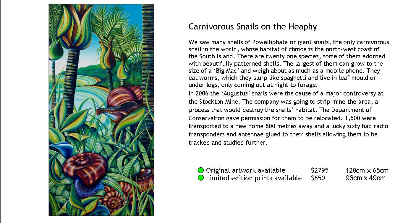 Carnivorous Snails on the Heaphy.jpg