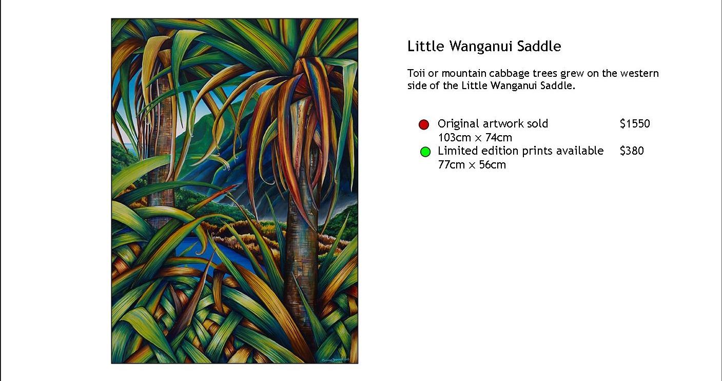 Little Wanganui Saddle.jpg
