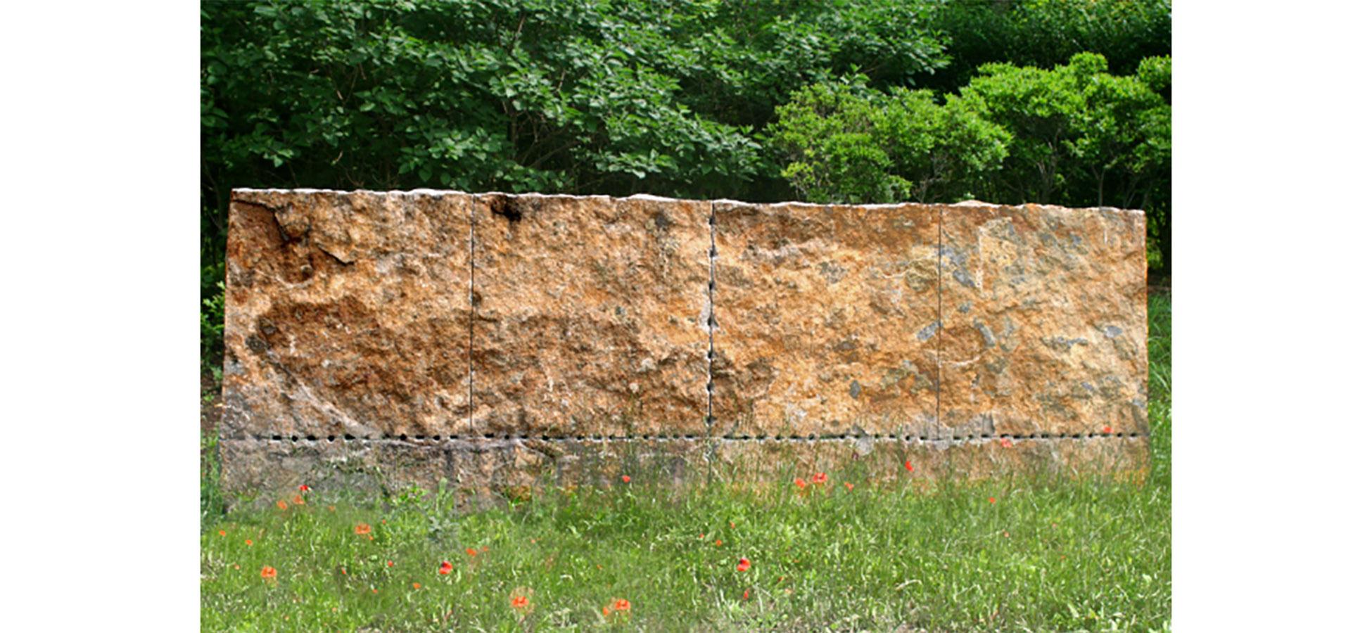 wallflower - edited.jpg