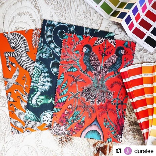 #Repost @duralee with @get_repost ・・・ Lions and tigers and bears, OH MY! We're finding it hard not to fall in love with Animalia, a new collection of coordinating fabric and wall coverings by artist @emmajshipley for @clarke_clarke_interiors. Stop by your local Duralee showroom or contact your sales representative to get your hands on some samples!
