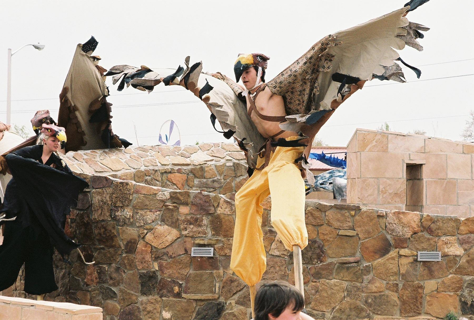 Redtail Hawk.jpg