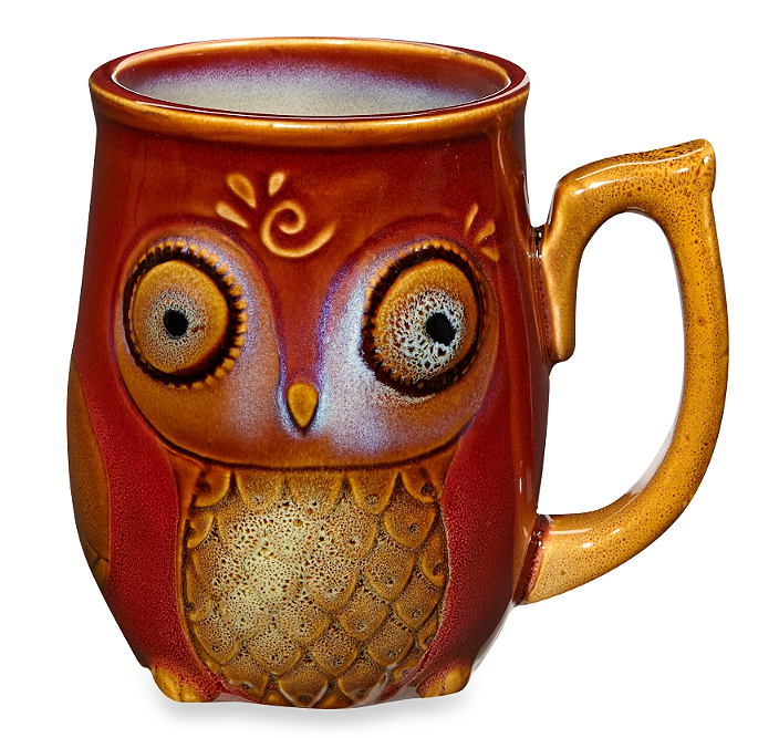 Nature's Owl 12-Ounce Mug in Red from  Bed, Bath & Beyond  ($5, worth every penny)
