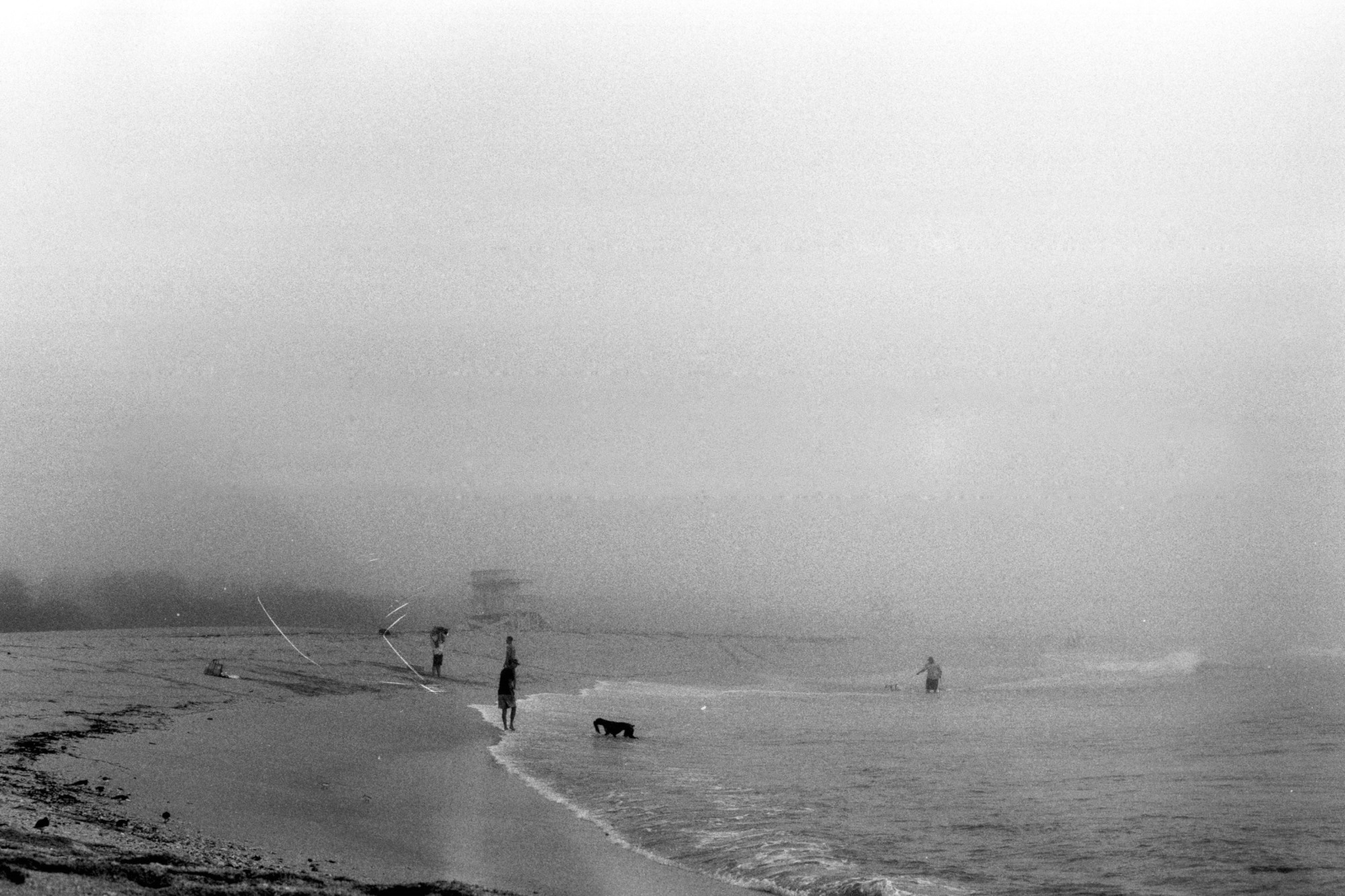 miami-haulover-beach-fog.jpg