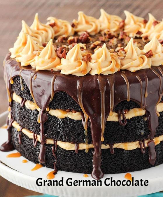 Turtle_Chocolate_Cake8.jpg