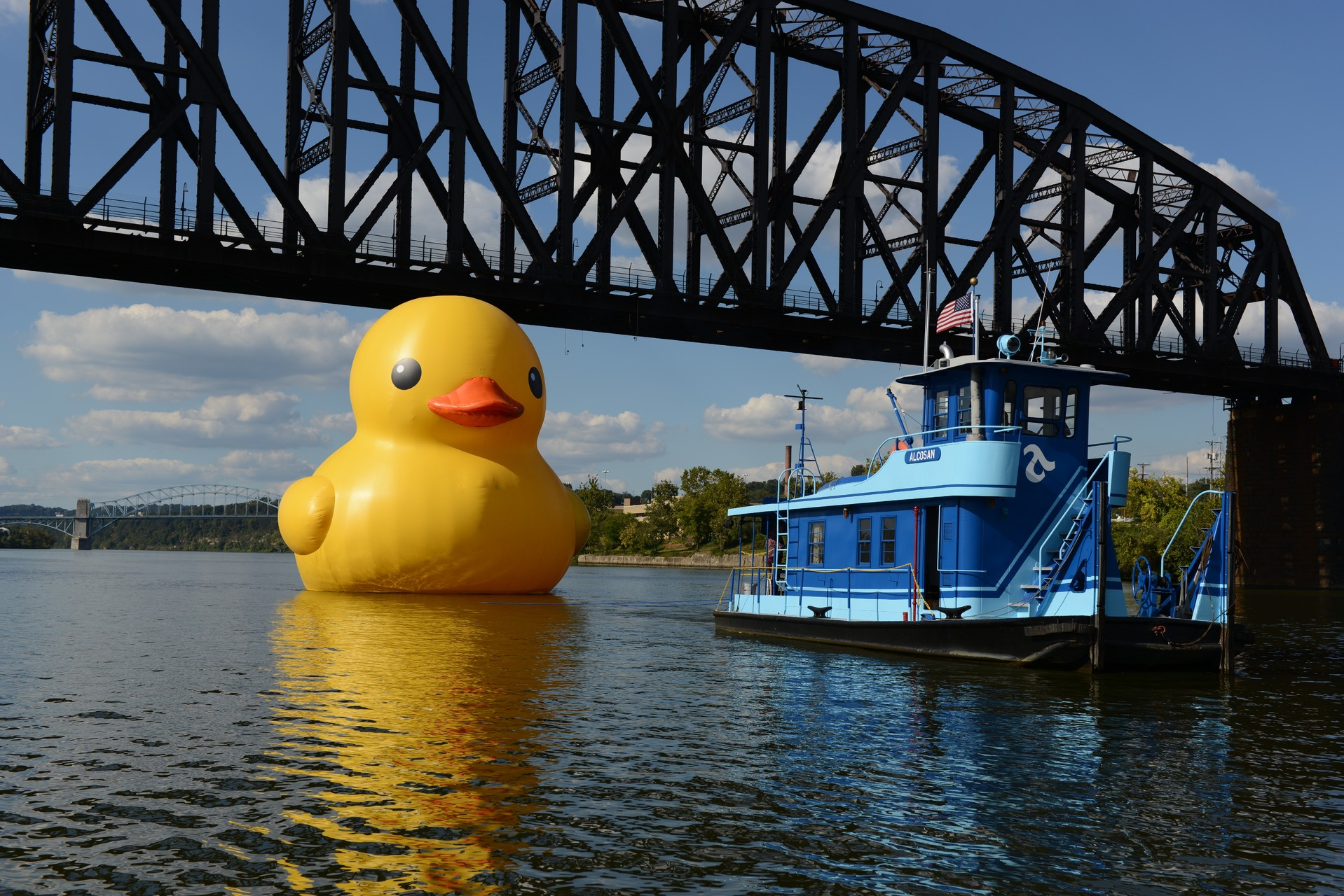 The Rubber Duck,  2013