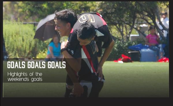 Video button side bar goals.png