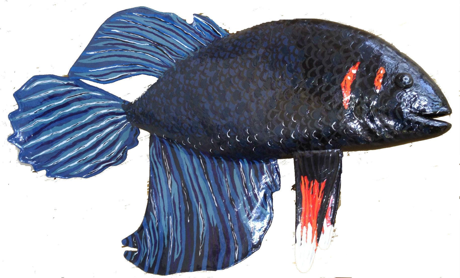 Siamese Fighting Fish (Beta)
