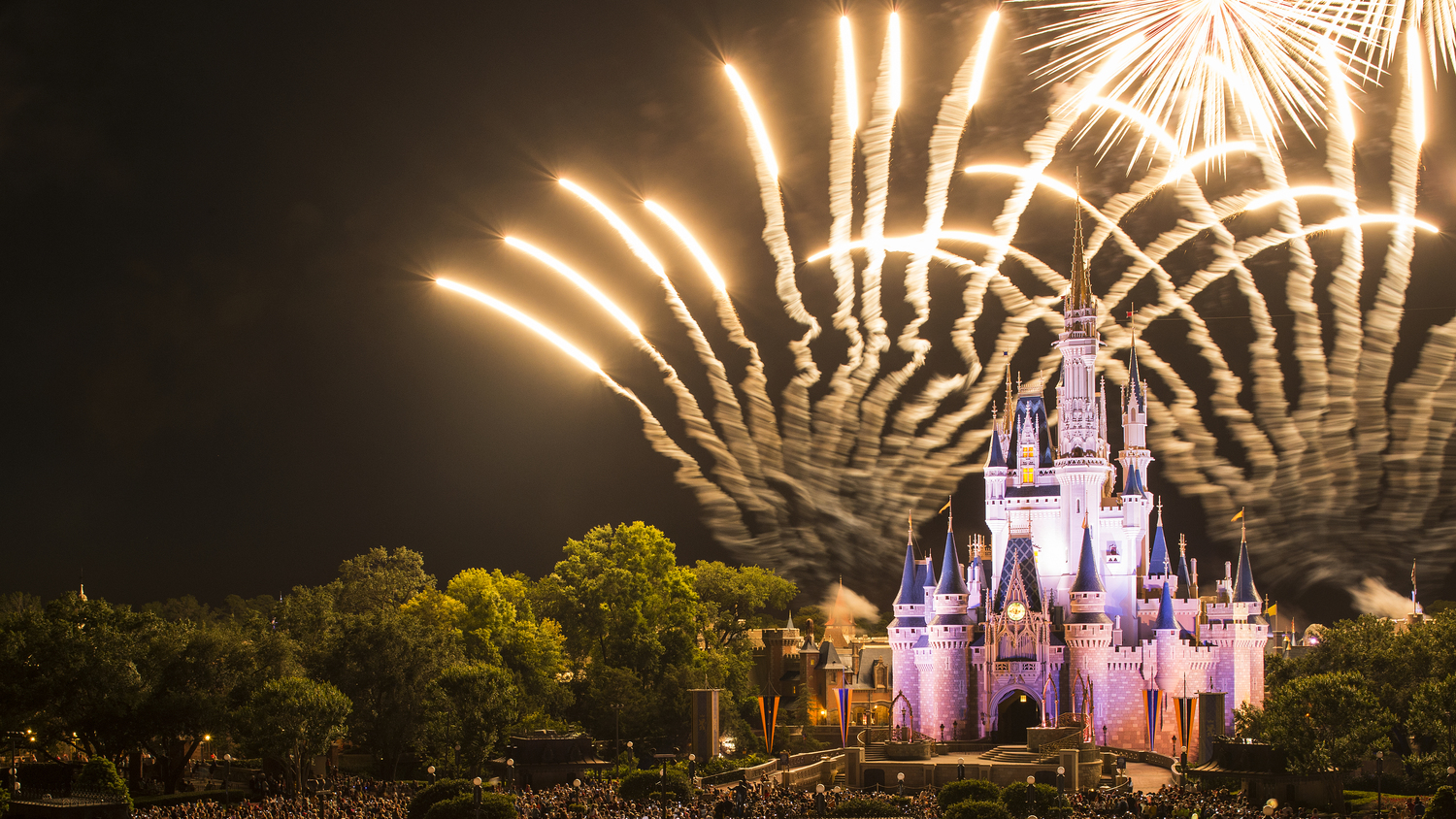 Castle with Fireworks.JPG