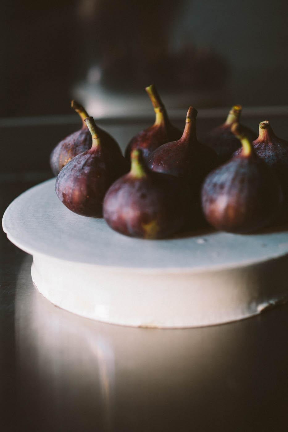 Figs-1.jpg