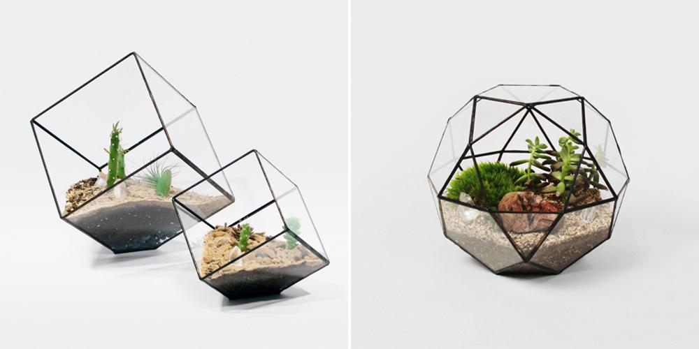 Terrariums by Score + Solder