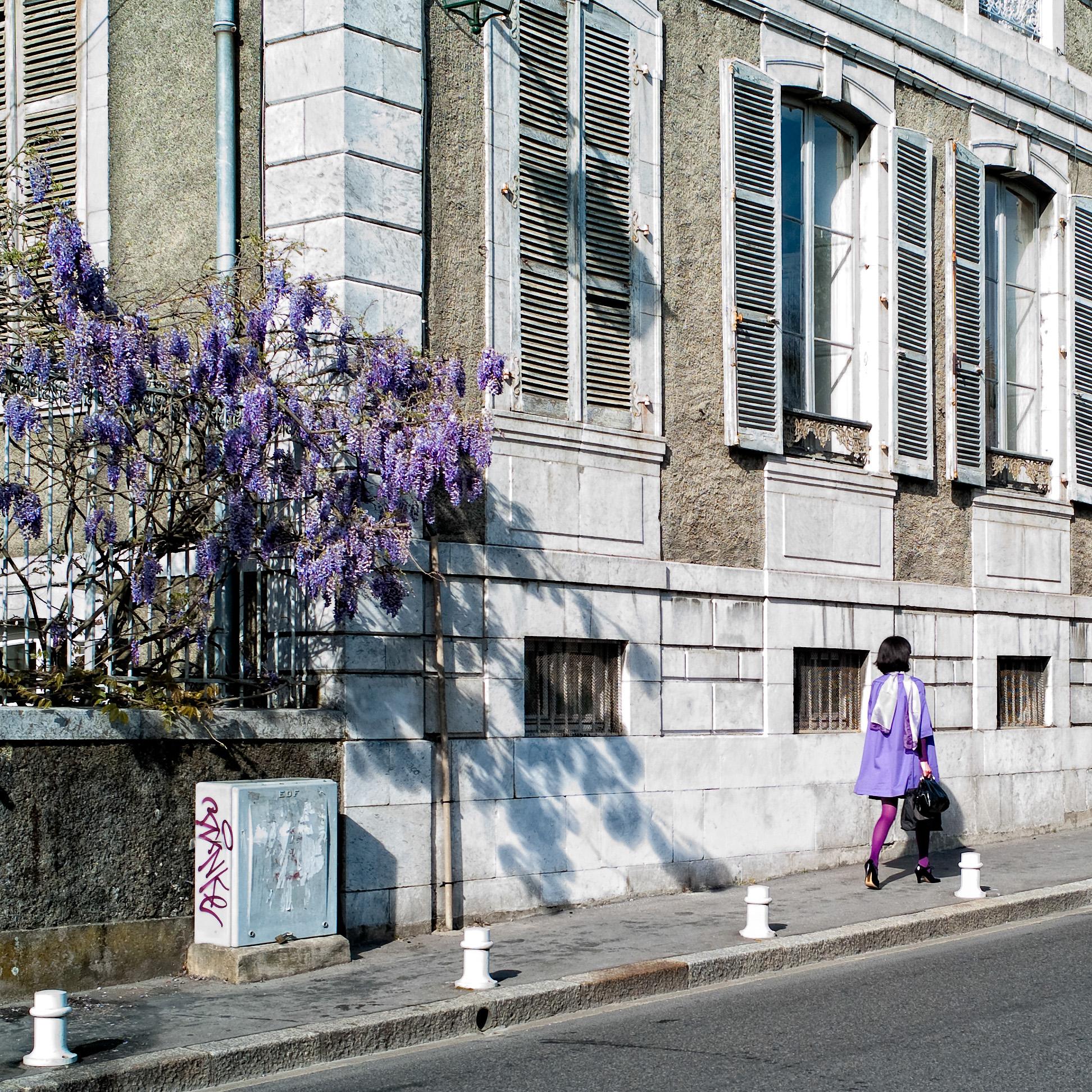 Pau, boulevard des Pyrénées, en avril 2009.
