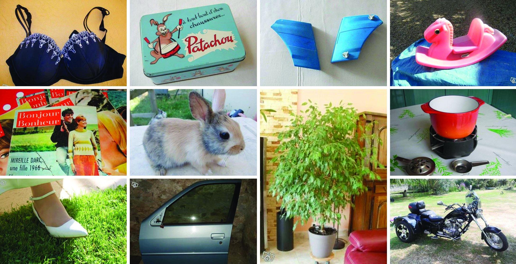 On trouve de tout sur leboncoin.fr, même des caches pour la mobylette 102, des lapins, une portière et un ficus.