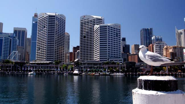 Australia10vid.jpg