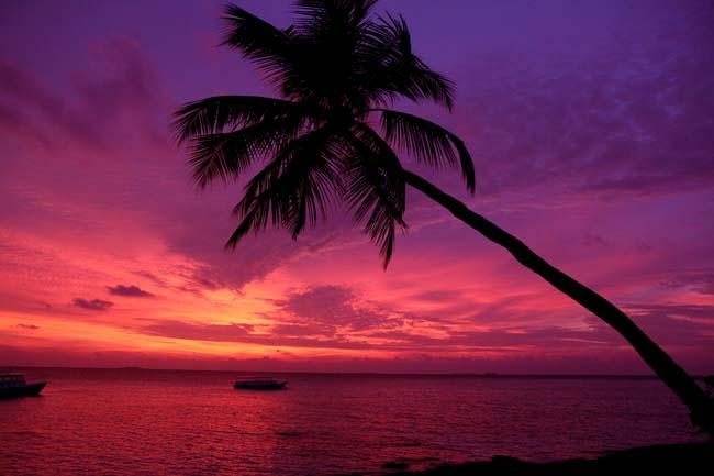 Maldives (203).jpg