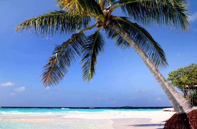 Maldives (308).jpg