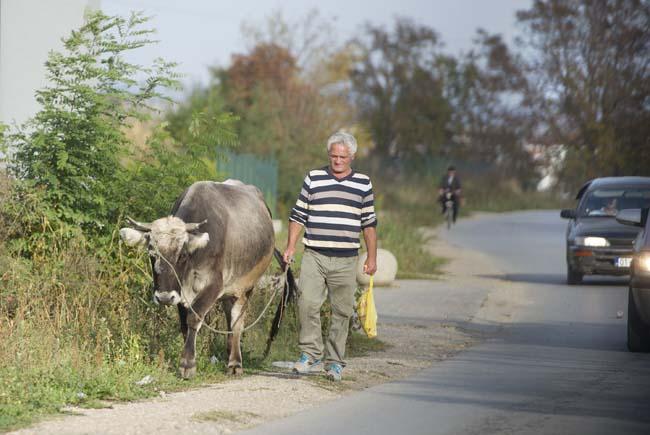 Kosovo8.jpg