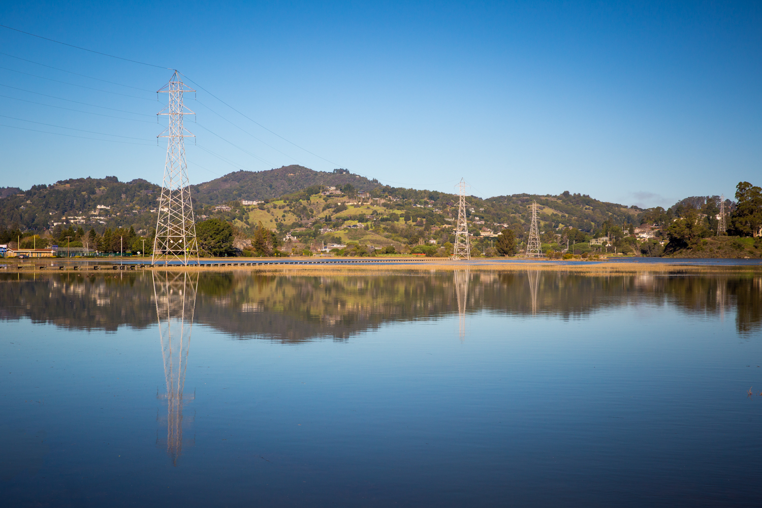 Flooded low area by Richardson Bay