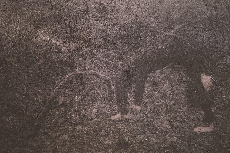 Rootsprojectsbirgitteheiberg-4.jpg