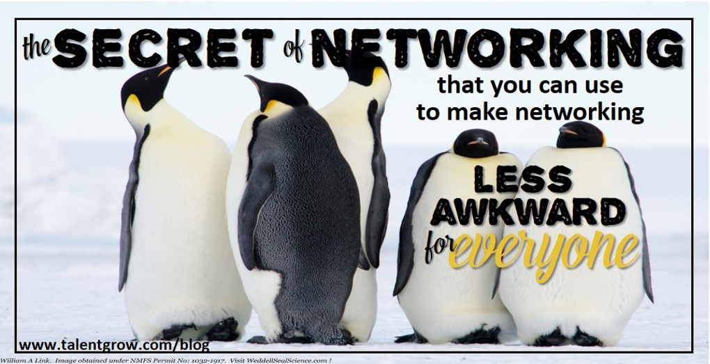 the secret of networking that you can use to make networking less awkward for everyone by Halelly Azulay TalentGrow