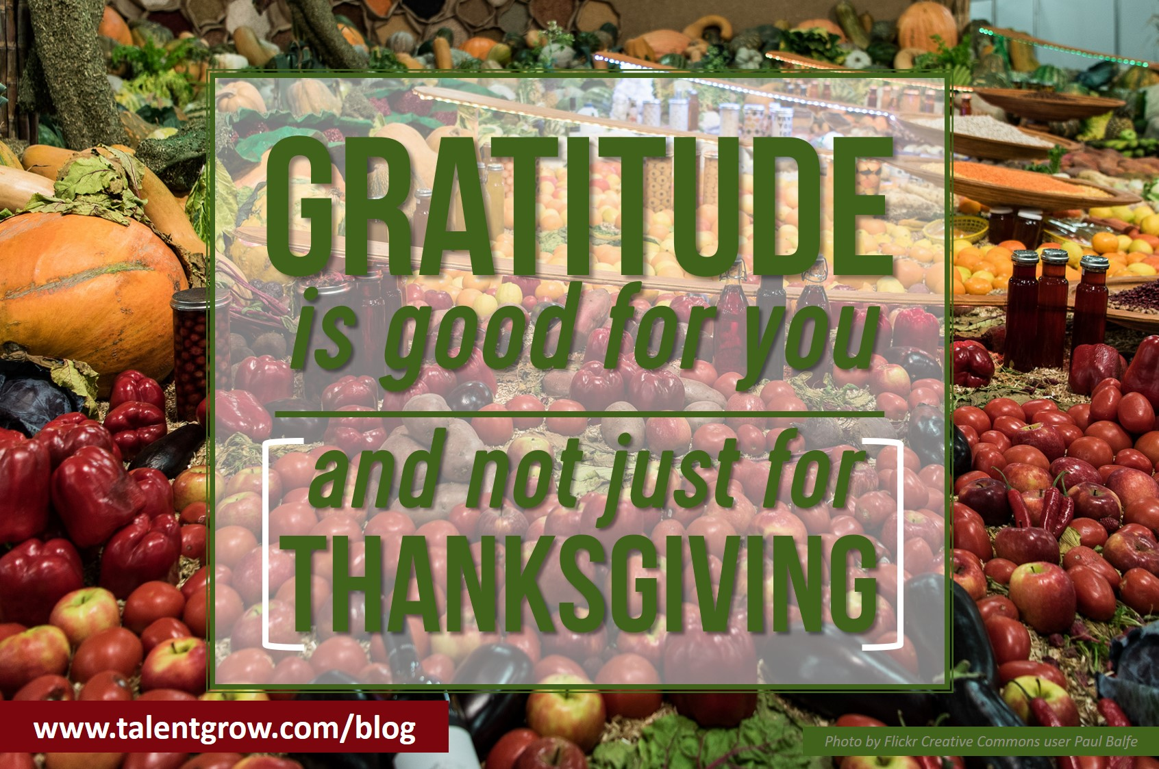gratitude is good for you and not just for thanksgiving.jpg