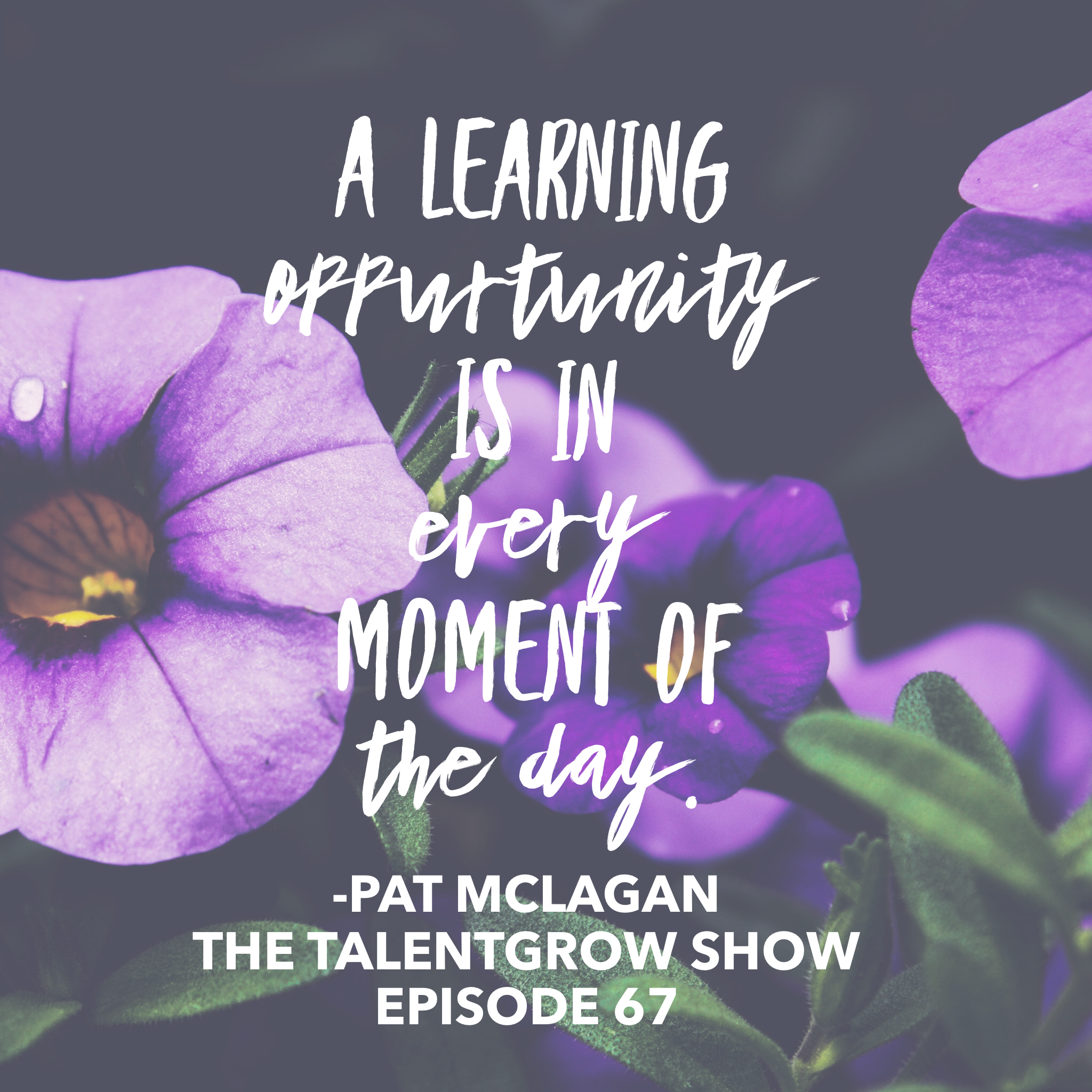Ep067: Unstoppable you – the 7 practices of lifelong learning with Pat McLagan