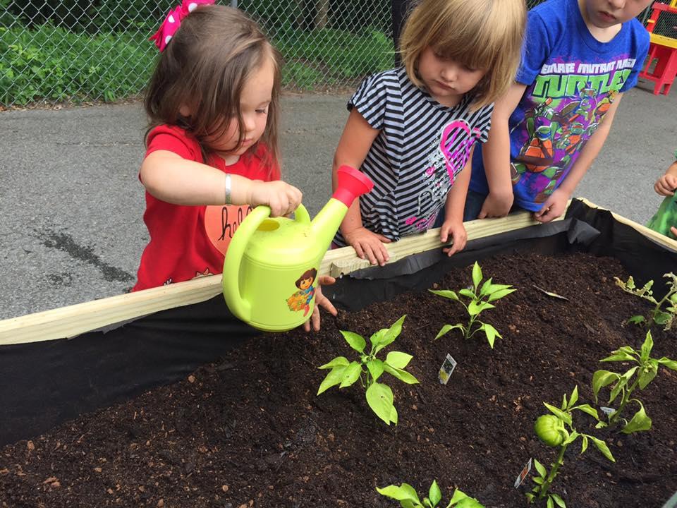 Gardening at Little Learner's.jpg