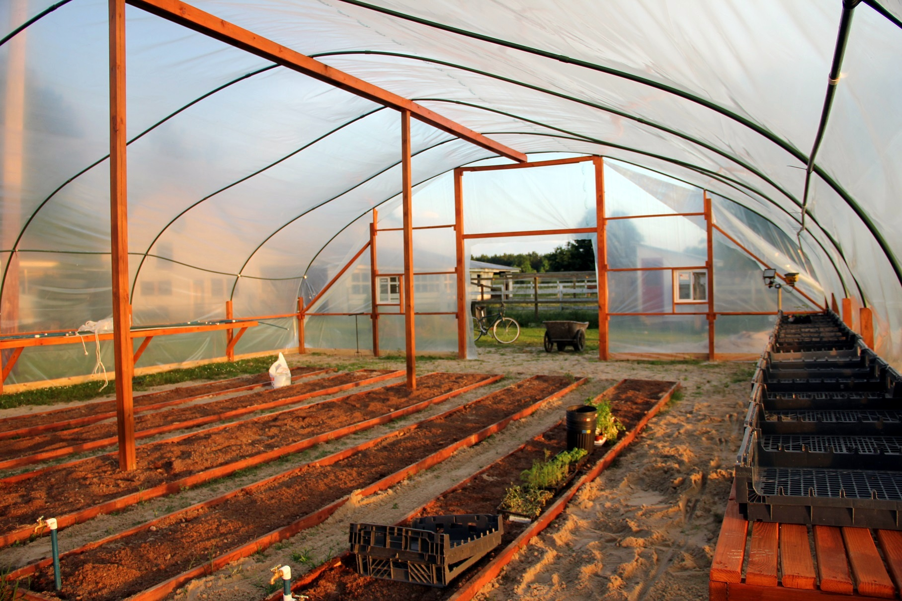 greenhouse at sunset.jpg