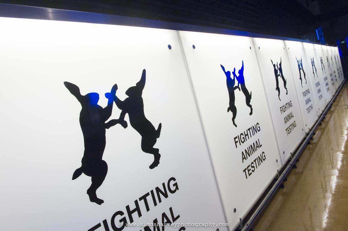 fighting_animal_testing.jpg