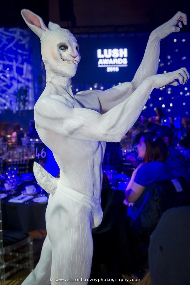 Lush_awards_rabbit.jpg