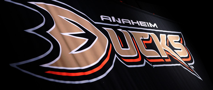 Anaheim_Ducks_Banner.jpg