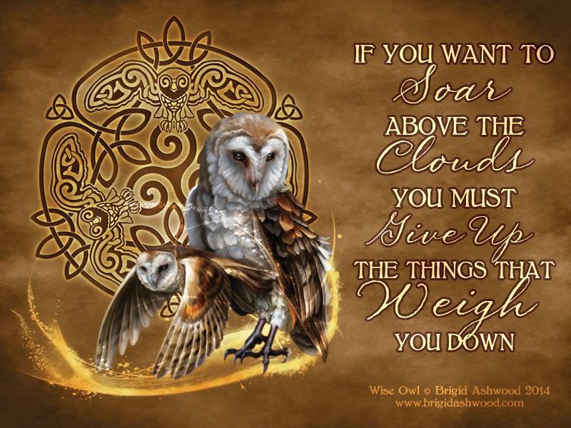 owl-brigid-ashwood.jpg