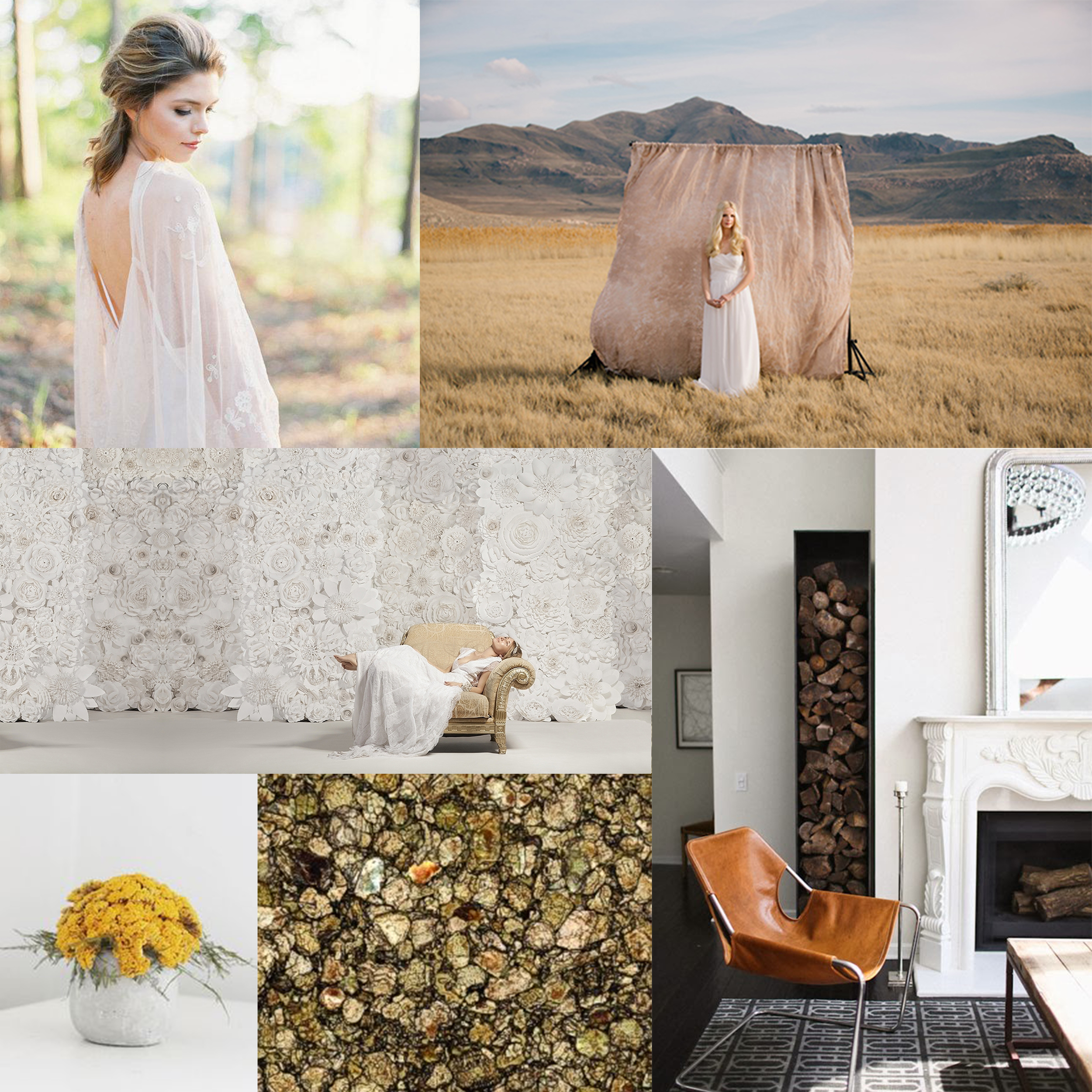 Floral ,  Liquid Gold ,  Leather Seating ,  Paper Flowers ,  Outdoor shoot ,  Serene